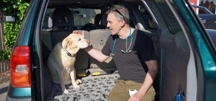 Need a home visit Vet in Molesey?