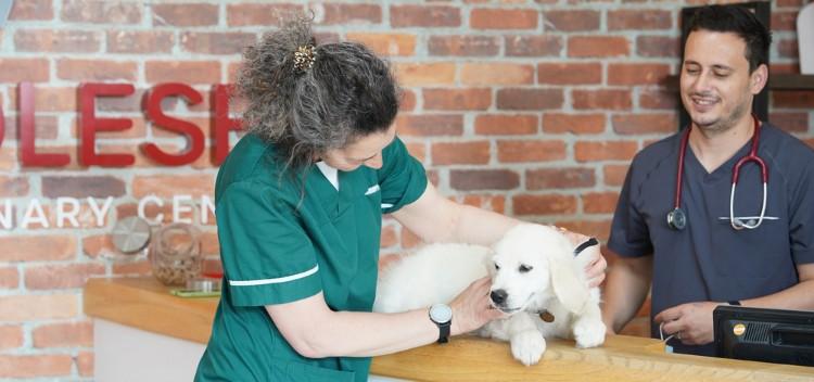Sign up for regular pet care advice & news