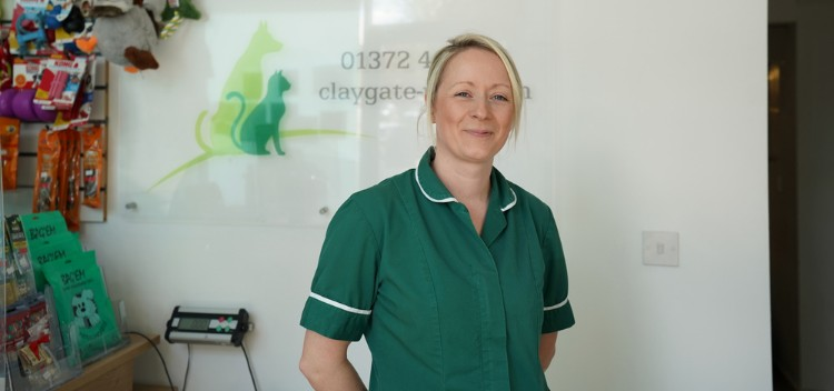 Why choose Claygate Vets