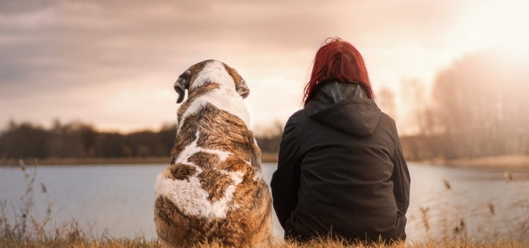 Pet bereavement services in Molesey - End of Life Care